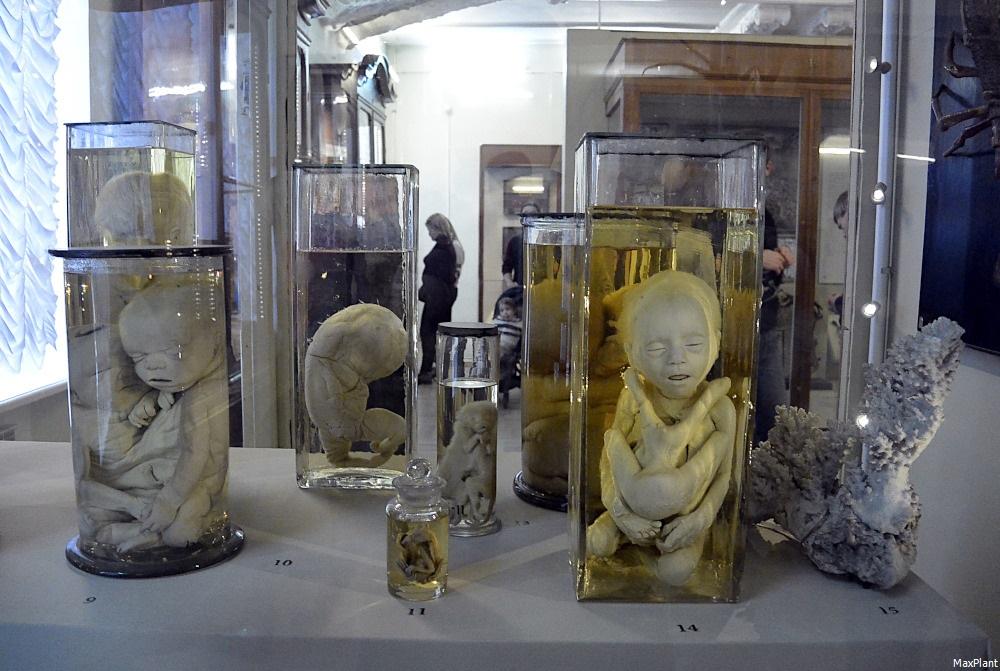 фото экспонатов заводов милана ближайшее время
