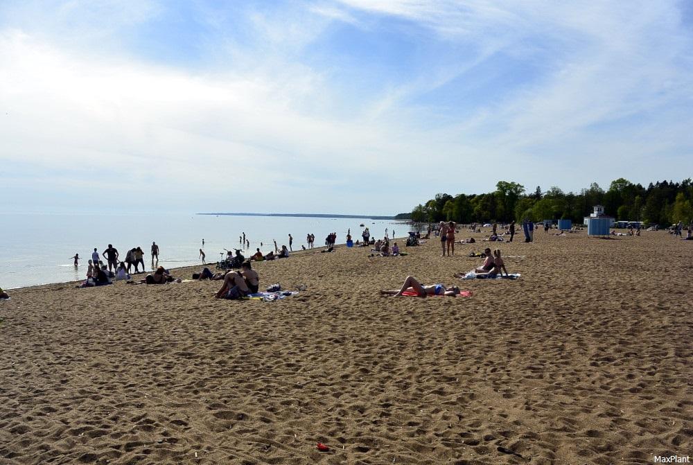 зеленогорск ленинградская область фото пляжей и набережной некоторые изменения